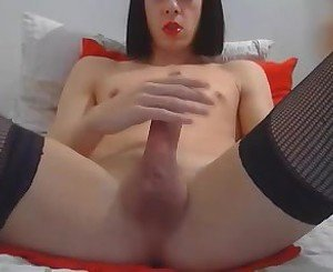 Young shemale pleases her cock